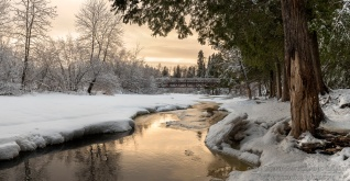 Tischer Photographic Gallery - Winter Wonderland II